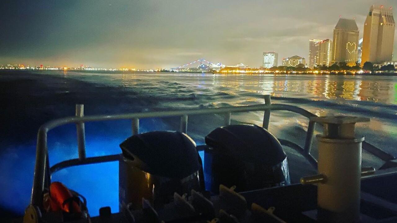 kasea steele bioluminescence san diego (1).jpg