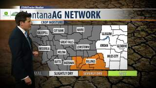 Montana Ag Network Weather: July 30th