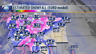 BOB HD_ESTIMATED SNOWFALL Euro 7 DAYS 3-11-20.png