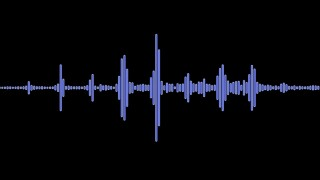 AUDIO WAVEFORM GENERIC.jpg