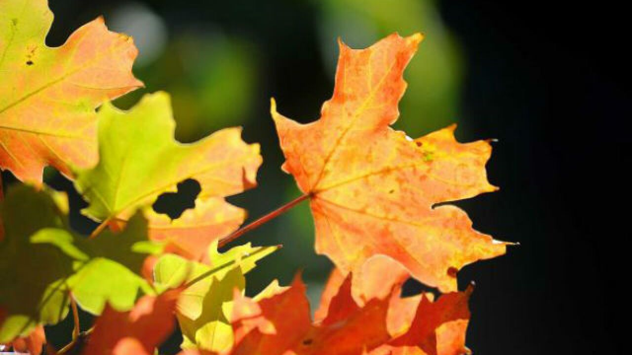 Fall arrives with big changes this weekend