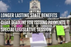 Protesters in Florida are calling for changes to the unemployment system after a series of problems since the downturn in the economy.