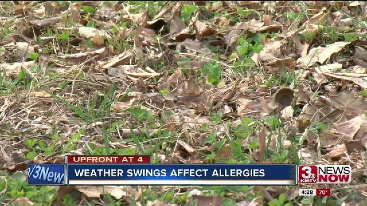 Weather swing affecting allergies and insects