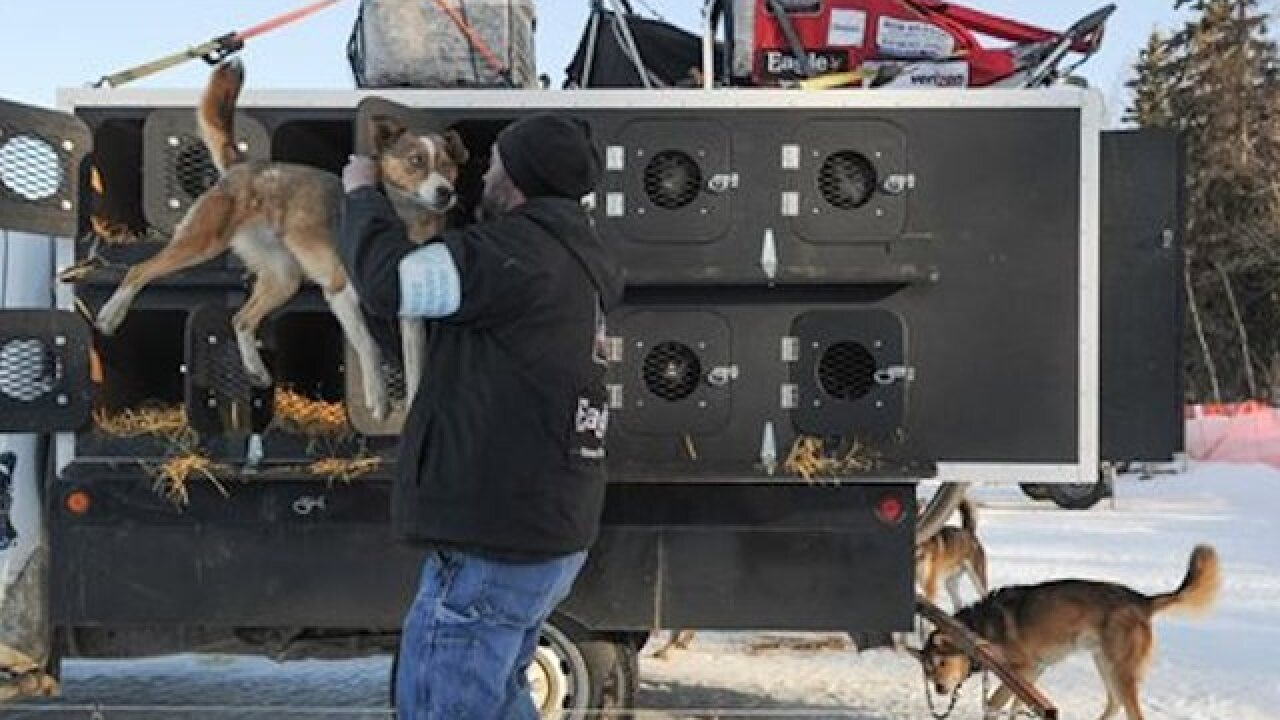 Mushers set off as Iditarod race begins