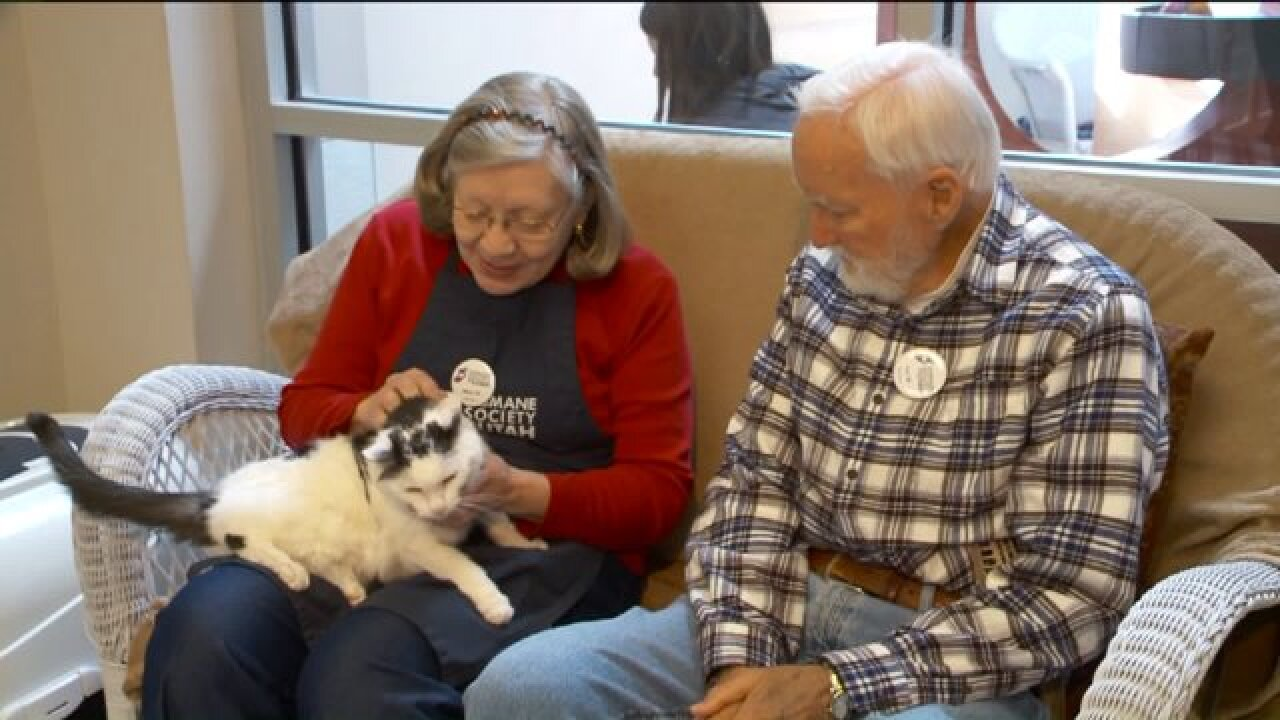 Booming Forward: The benefits of pet ownership for seniors