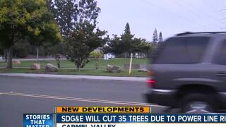 SDG&E will cut 35 trees due to power line risk