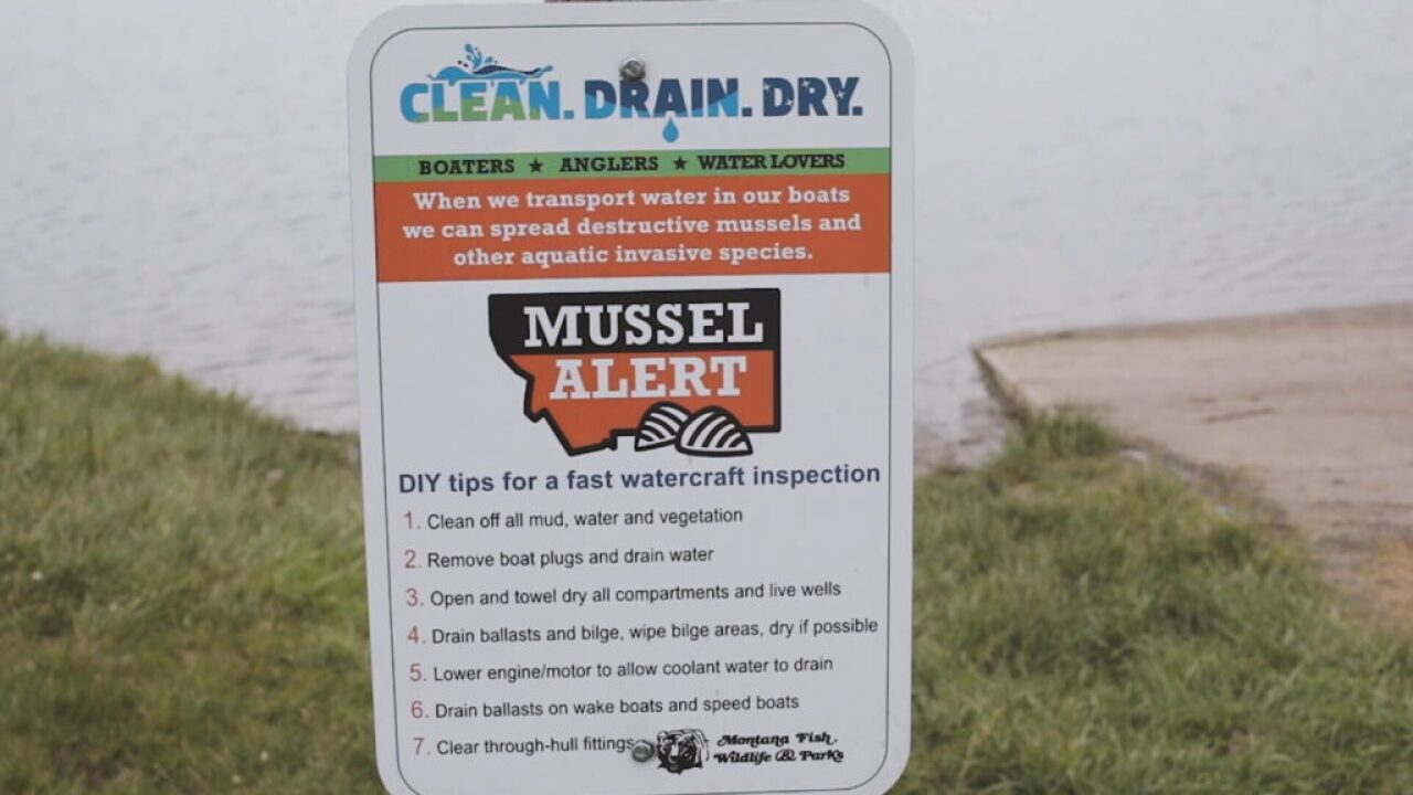 Invasive Asian clam shell found at Lake Elmo in Billings