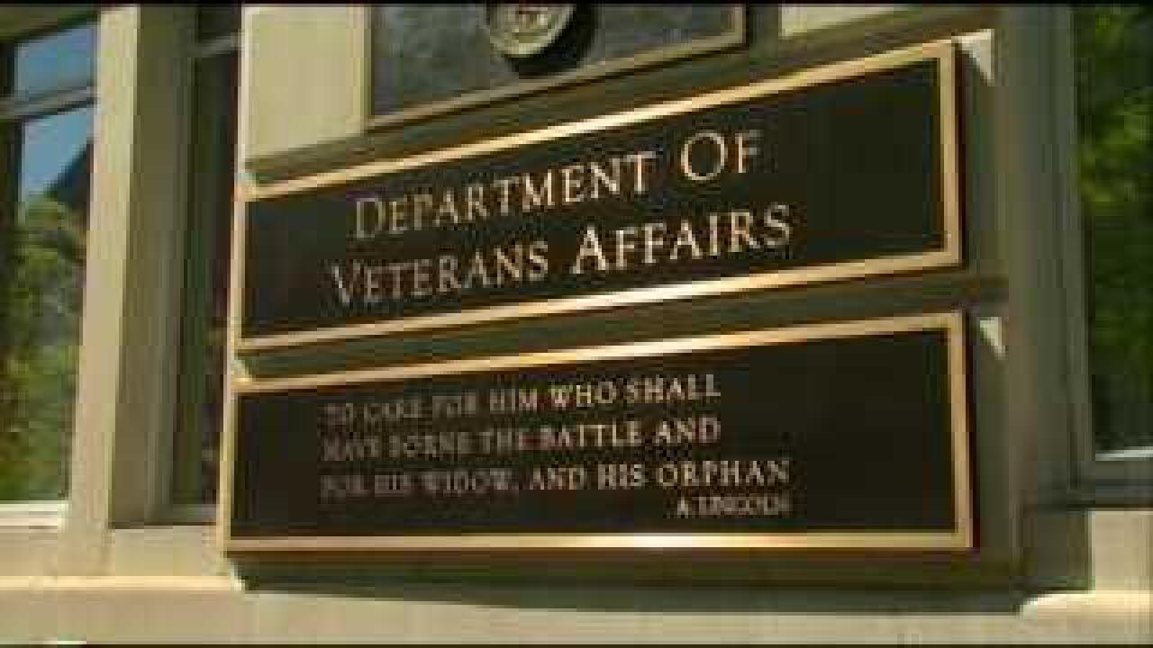 Tepid support for VA secretary amid patient care scandal
