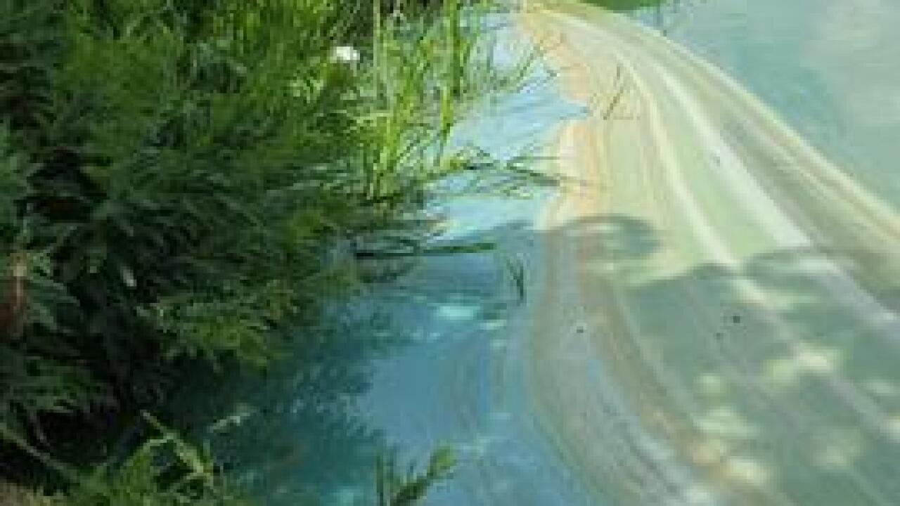 Blue-green algae confirmed at SE Oklahoma Lake