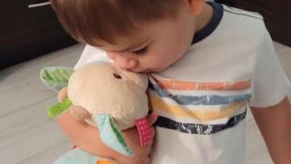 Arizona Diamondbacks help return lost stuffed animal COWIE to young Arizona fan