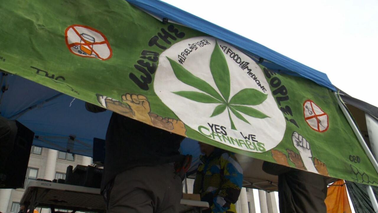 medical marijuana cannabis weed pot.JPG