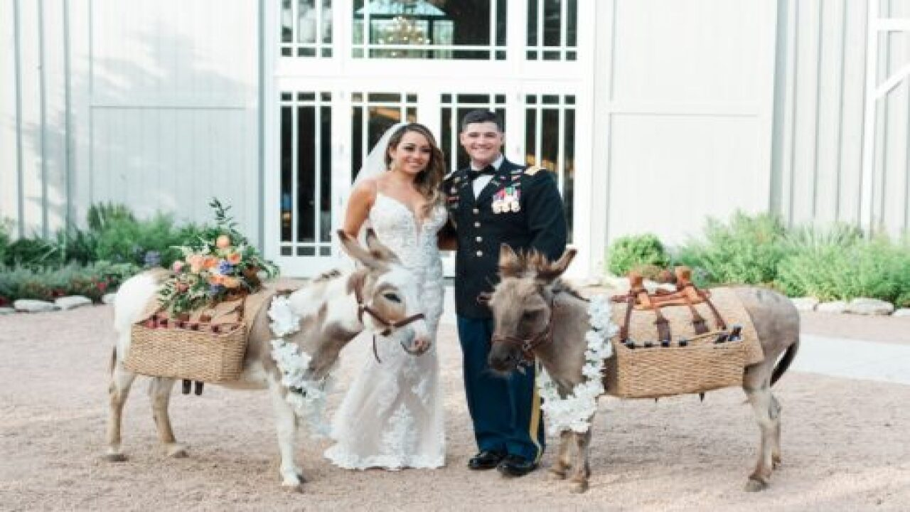 Some Couples Are Hiring Donkeys To Serve Drinks At Their Wedding