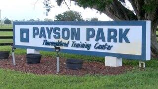 wptv-payson-park-.jpg