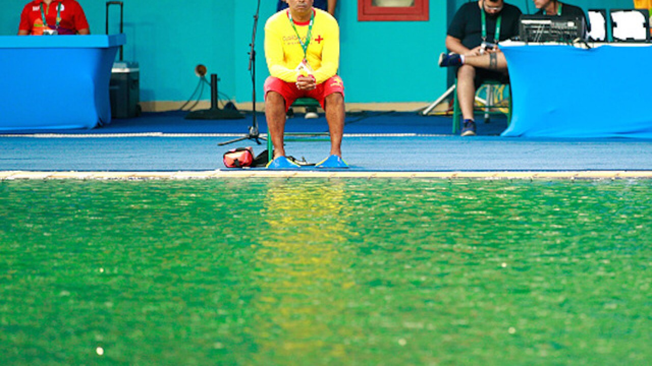 Olympic diving pool turns green, no one knows why