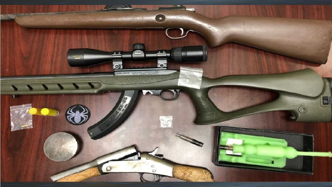 LCSO: Traffic stop leads to weapons, drug arrest