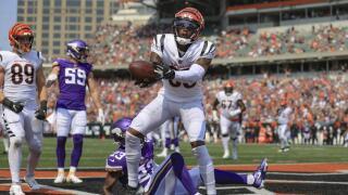 Cincinnati Bengals wide receiver Tee Higgins (85)