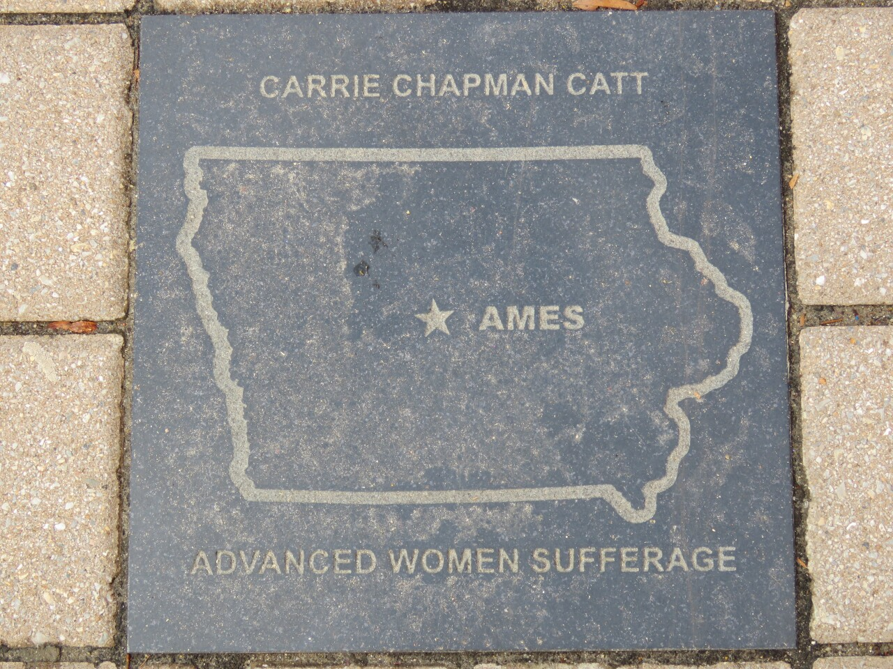 Carrie Chapman Catt, Suffragist