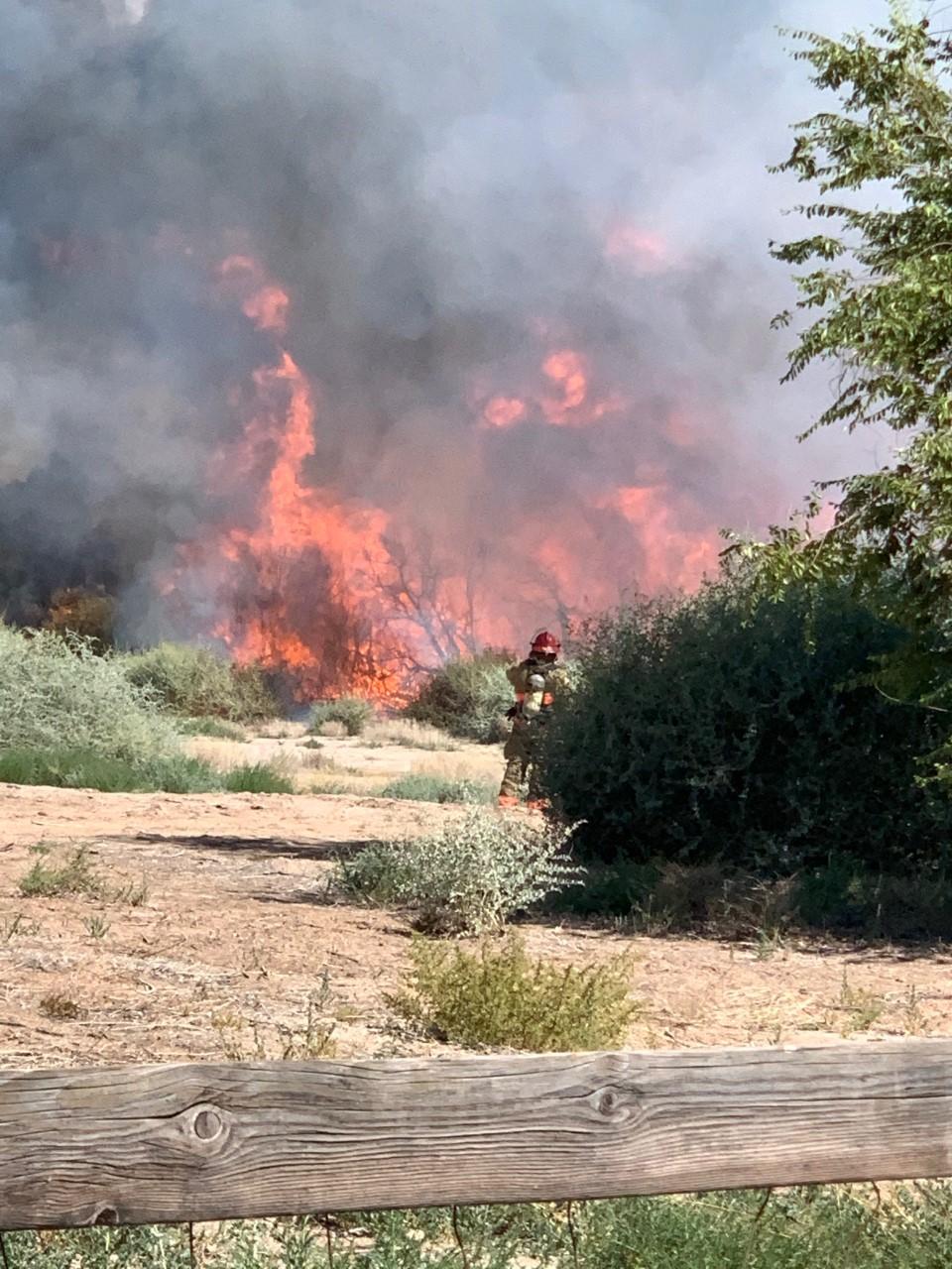 fire blm brushfire.png