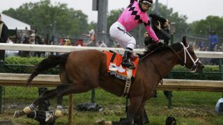 Maximum Security To Race For 1st Time Since Kentucky Derby