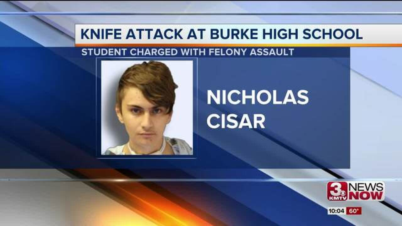 Suspect in Burke stabbing charged as an adult