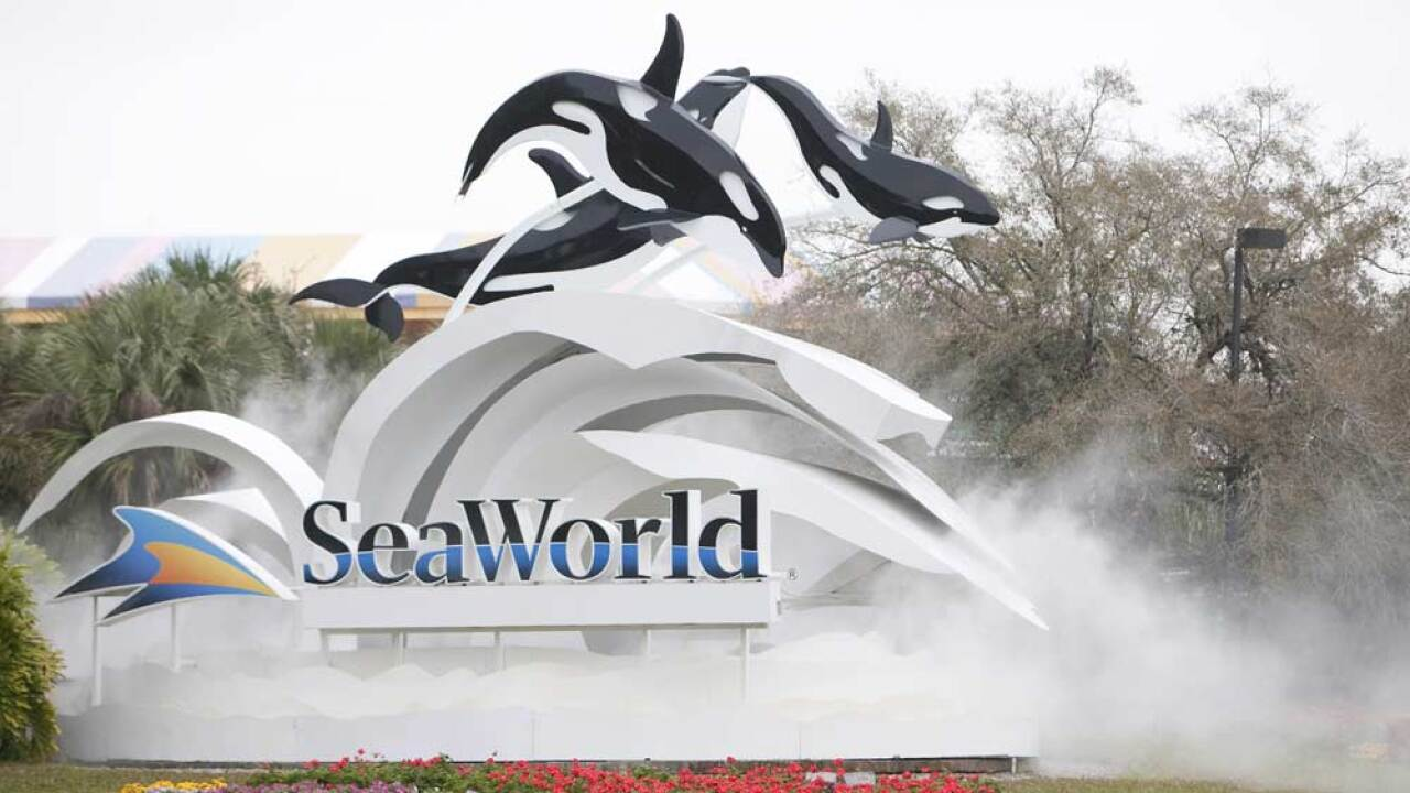 The sign at the entrance to SeaWorld. (File Photo by Matt Stroshane/Getty Images)