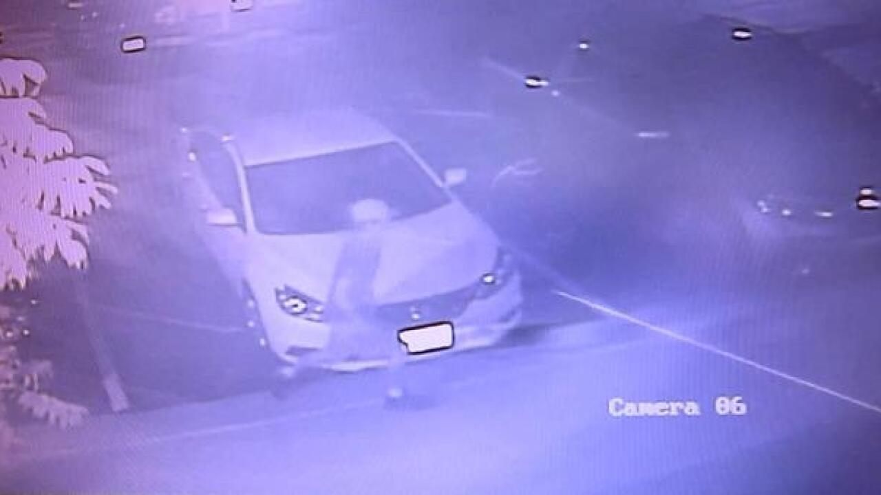 OPD: 16 vehicle break-ins in last two weeks