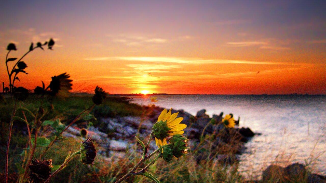 Sunsetic82618.jpg