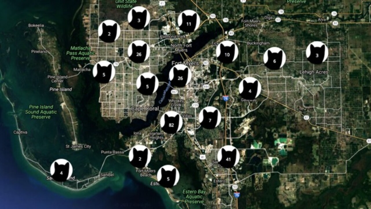 Invasion of Privacy: We found your home address through photos of your cat