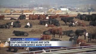 Montana Ag Network (Wednesday, May 20)