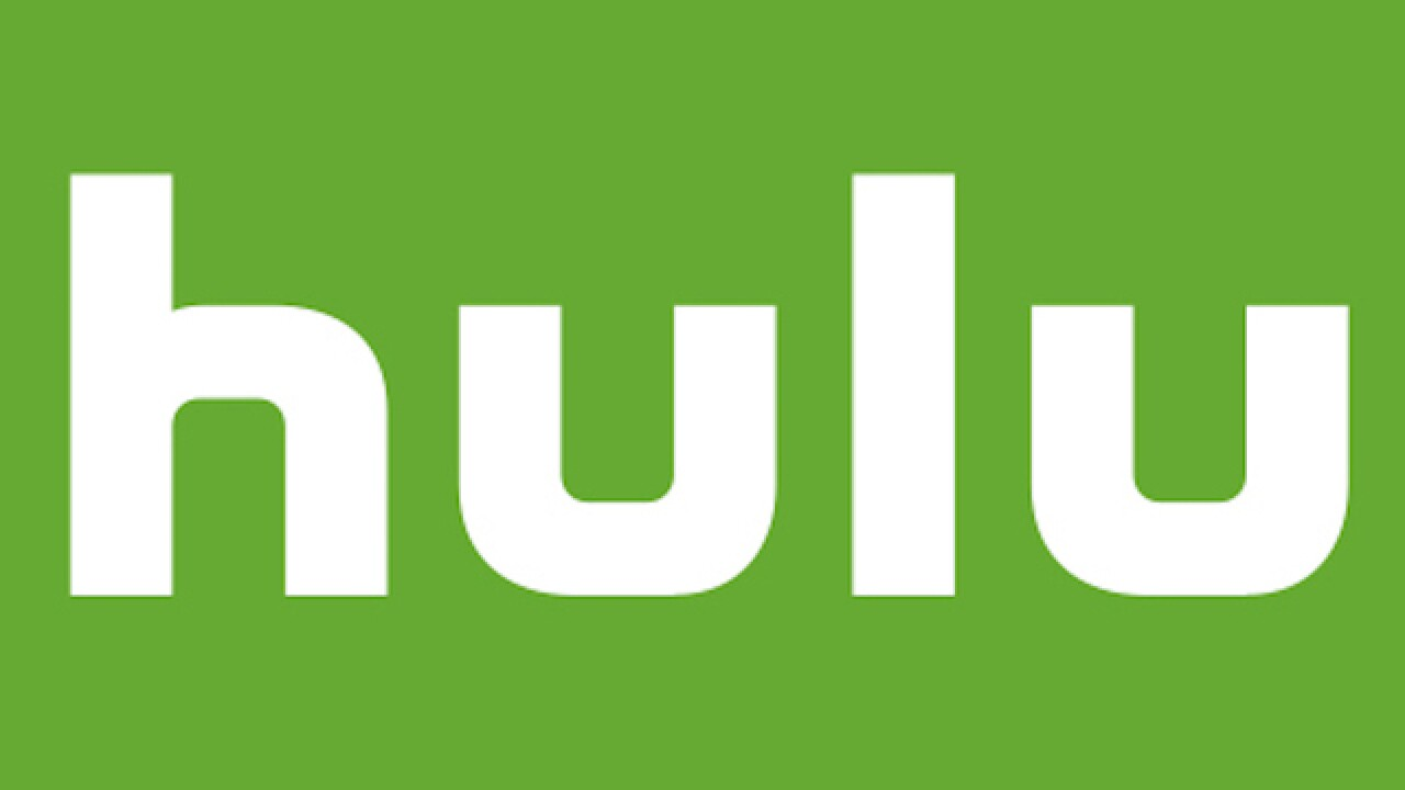 Hulu adds Newsy channel, more news and information to streaming service