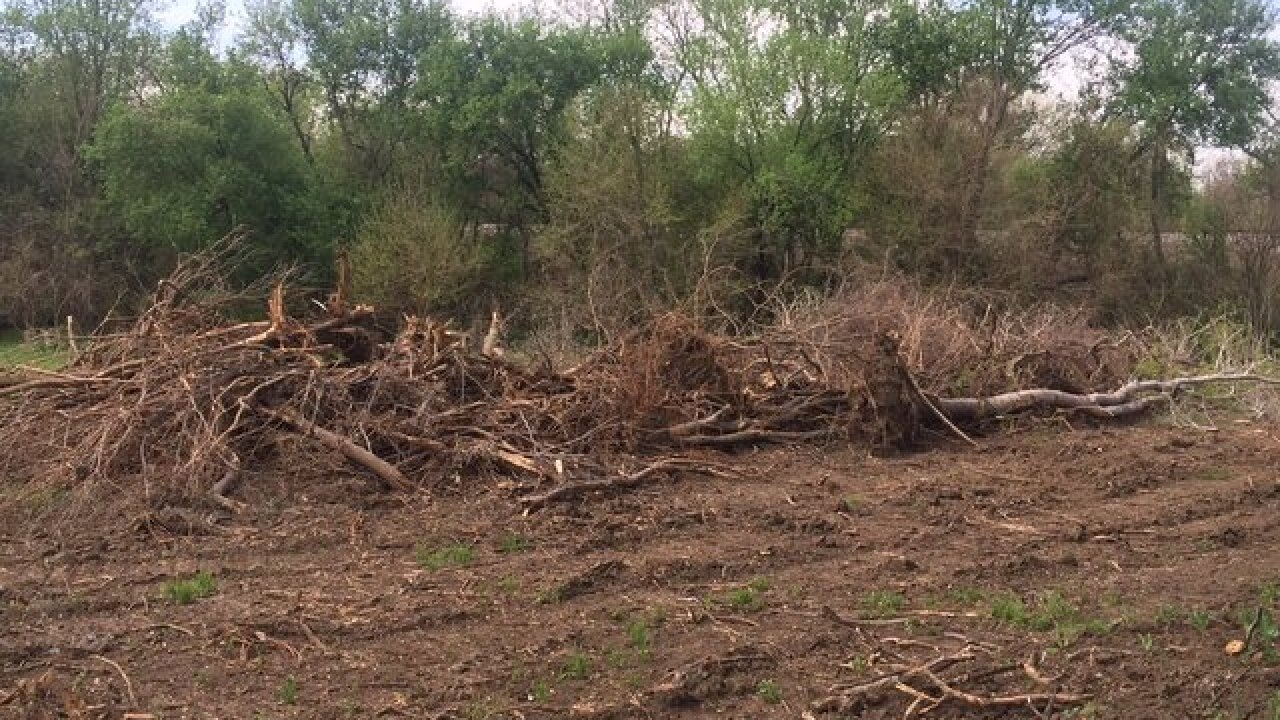 Trash in creek raises flooding, safety concerns