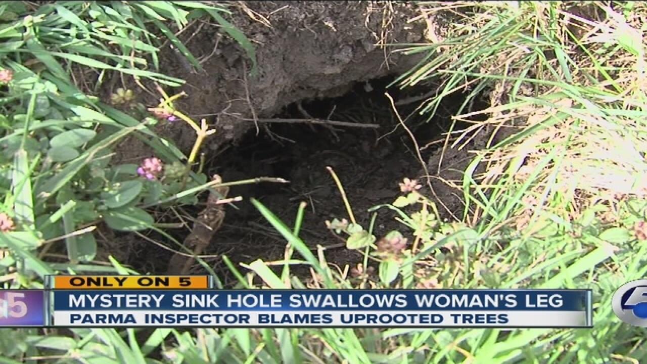 Sinkhole swallows elderly Parma woman's leg