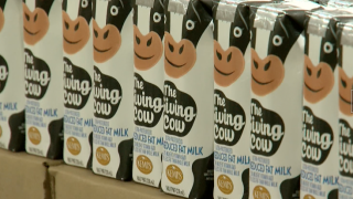 Giving Cow Milk donation at Feeding America Eastern Wisconsin