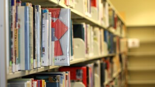 Ferndale Library.jpg