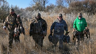 four_successful_dav_hunters_hagerman_wma_nov_2020.jpg