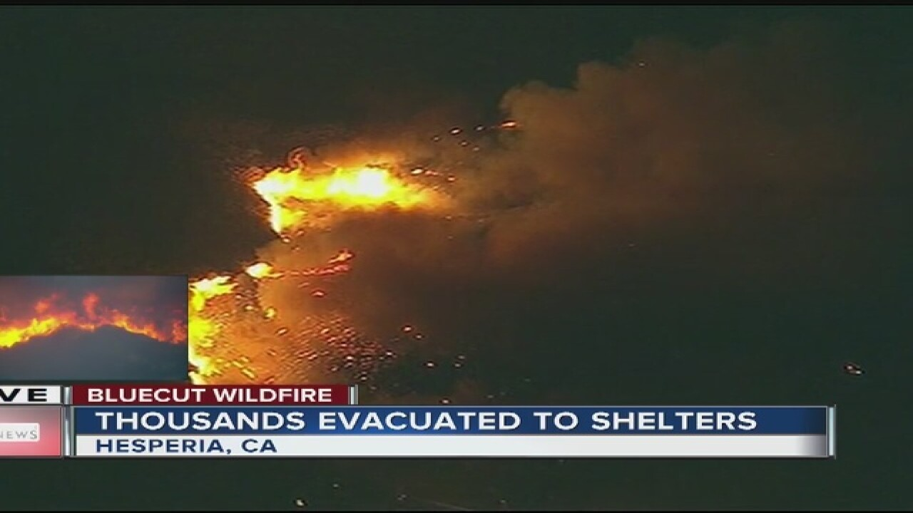 Blue Cut wildfire burns up to 30,000 acres, spreading rapidly