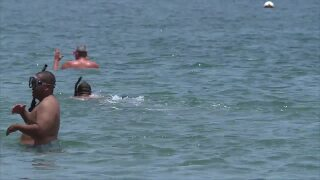 Snorkelers in water in Riviera Beach, June 30, 2020