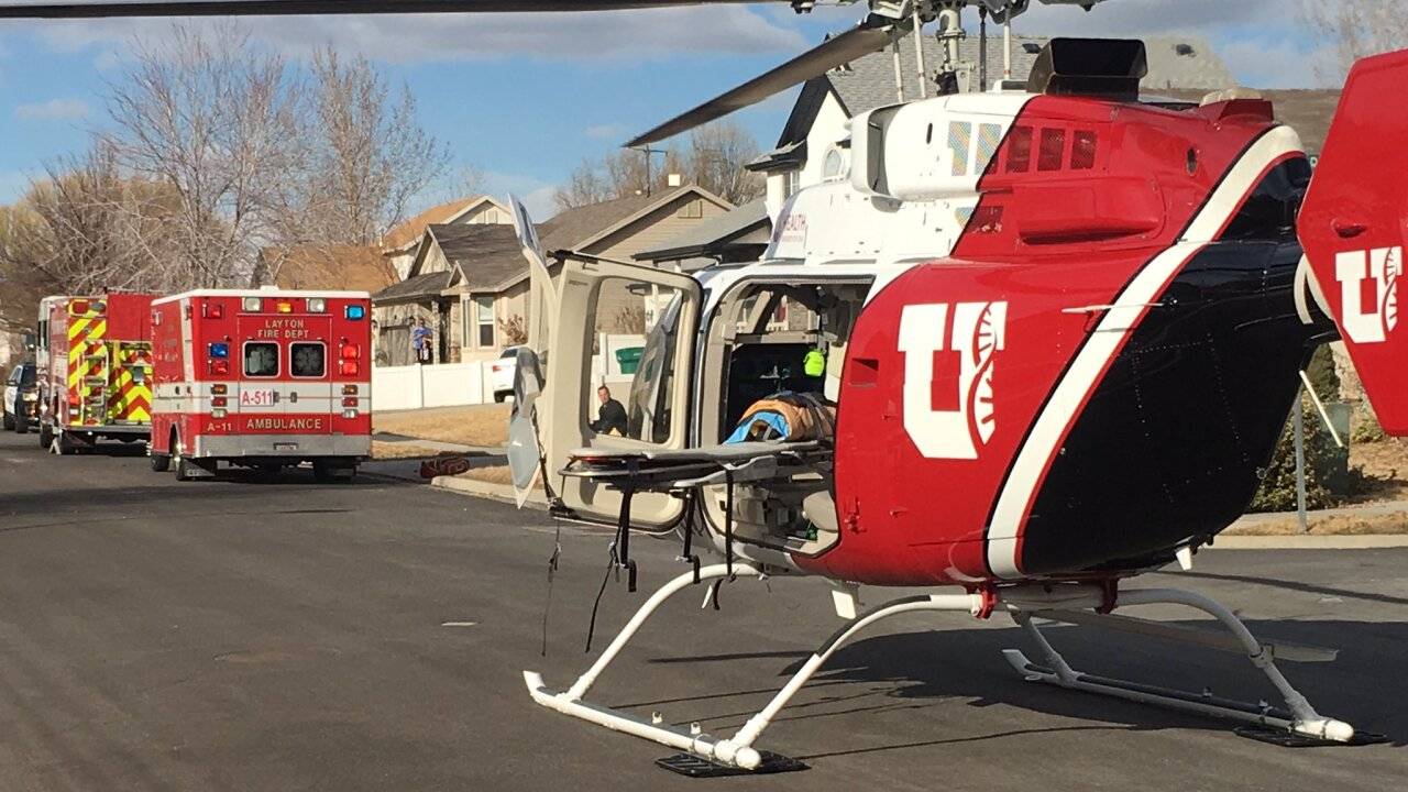 Firefighters: Dog bites off Utah 4-year-old's arm, may have eaten it