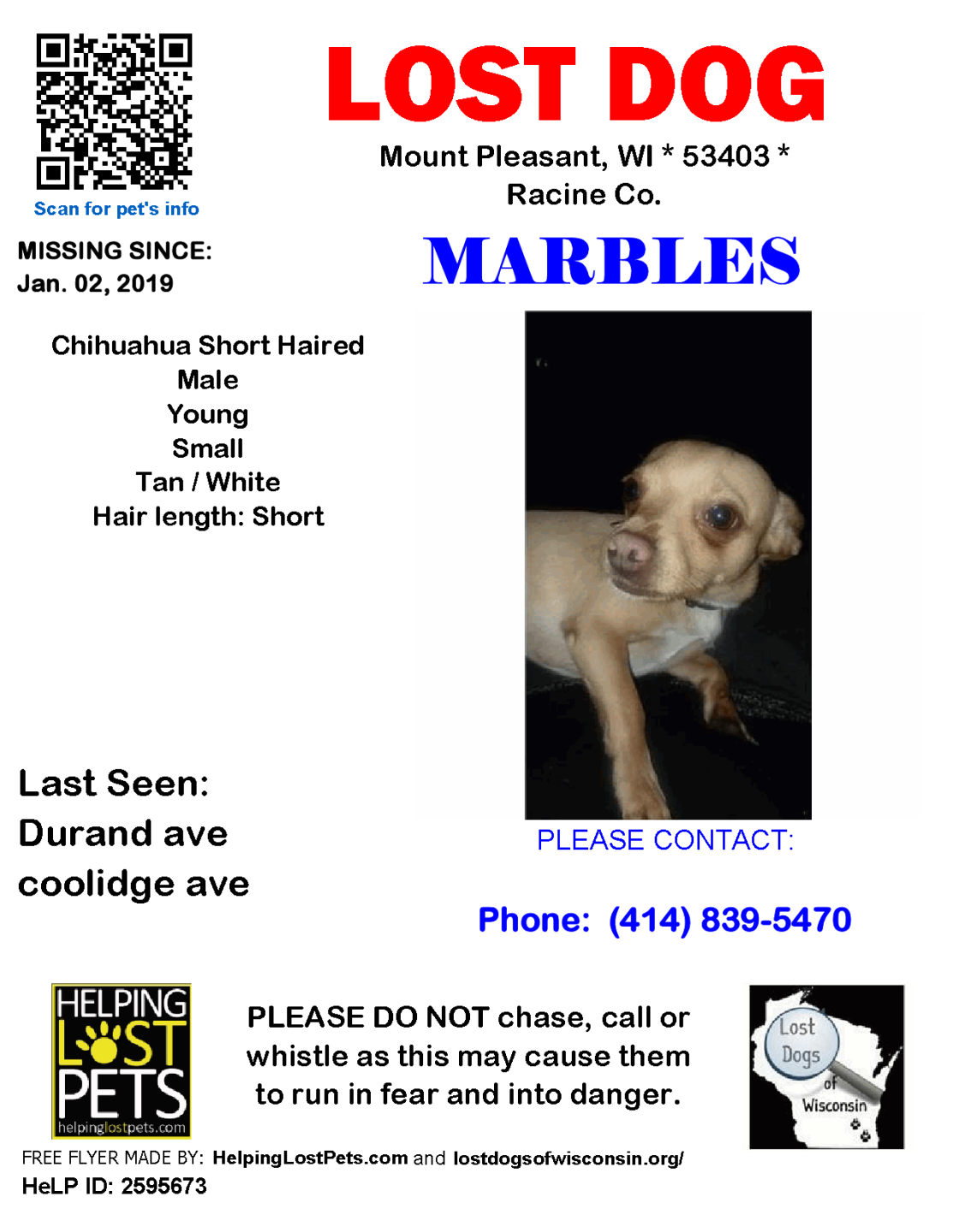 0102 Marbles Chihuahua Young.png