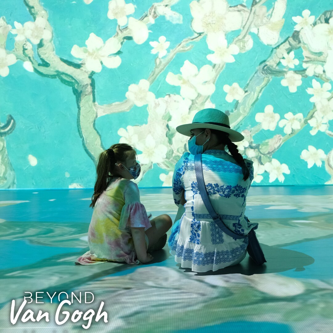 Beyond Van Gogh Exhibit will be COVID-friendly with small crowds and social distancing