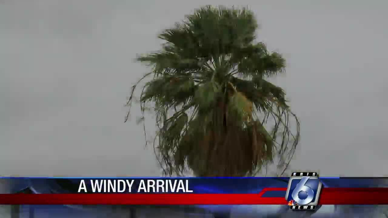Gusty winds blew through the Coastal Bend last night