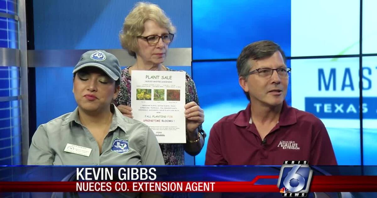 Senior Gardener Center will stage huge fall plant sale tomorrow