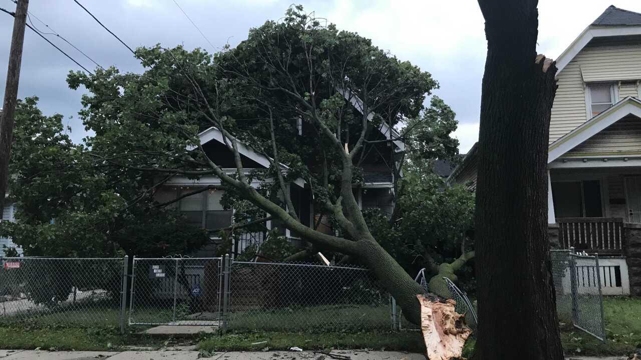 Storm Damage in Rufus King Neighborhood