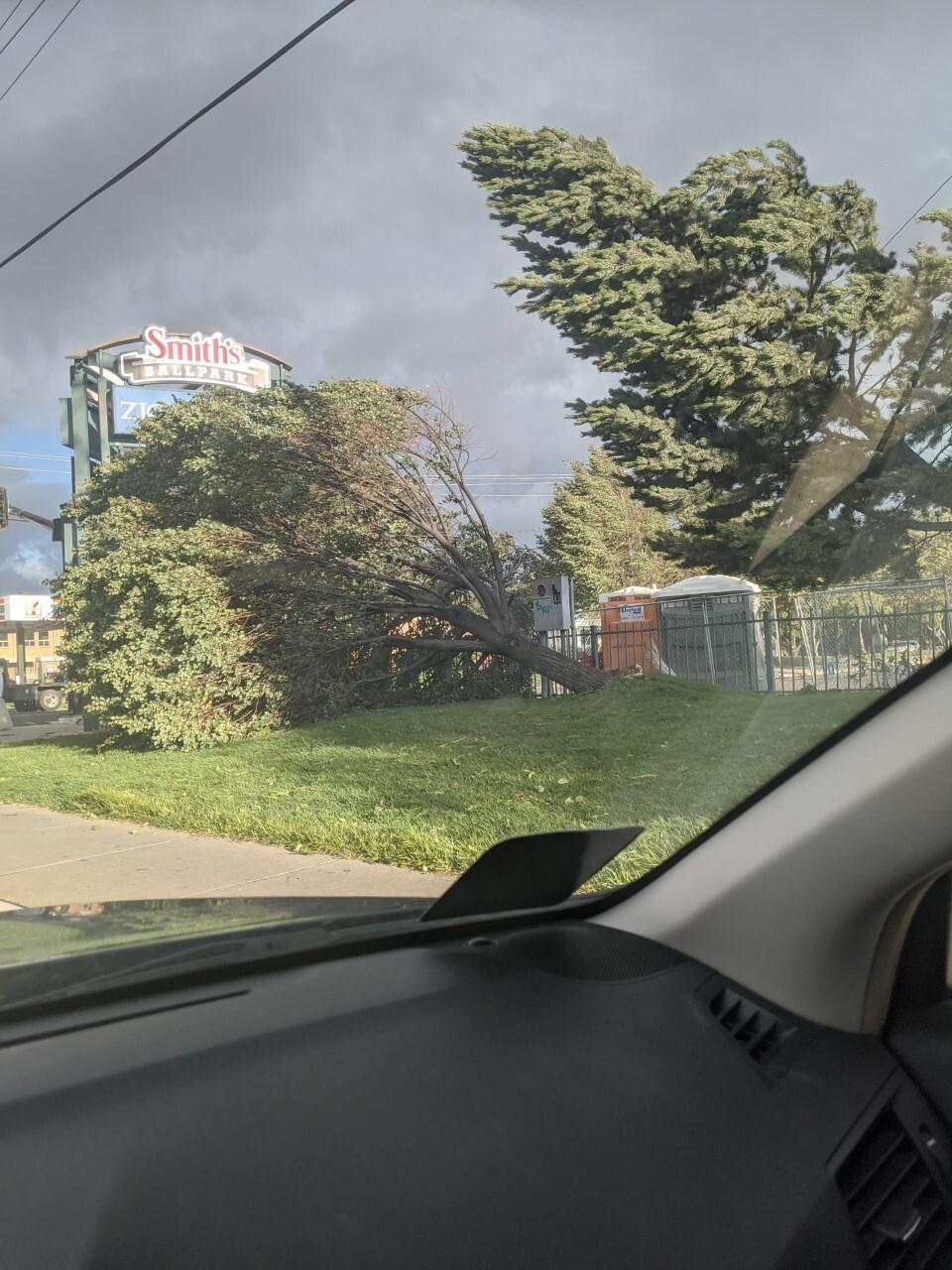 Smith's Ballpark Damage2.jpg