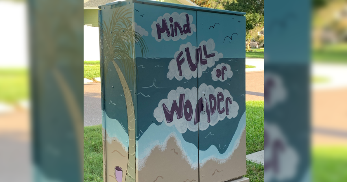 Utility boxes in Tampa neighborhood show messages of hope