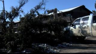 Stevensville Wind Damage