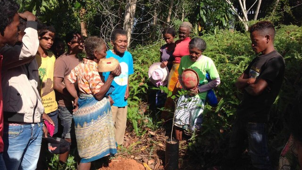 Omaha Zoo plants two million trees in Madagascar