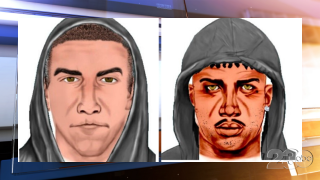 Downtown Sexual Assault suspects