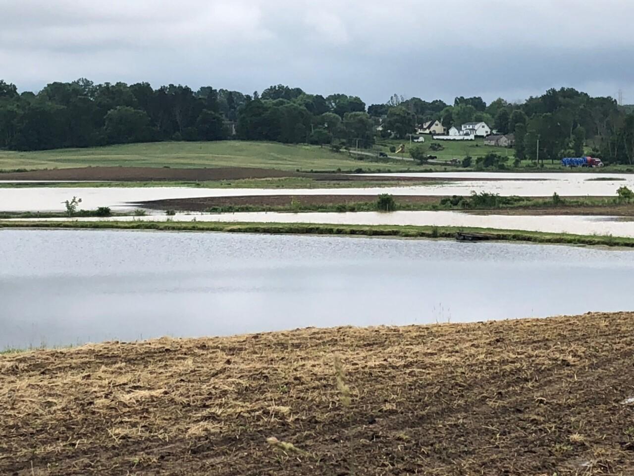 flooded fields 1