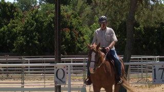 M.A.R.E. Therapeutic Riding Center